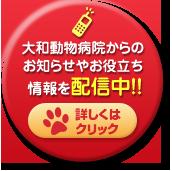 大和動物病院からのお知らせやお役立ち情報を配信中!!詳しくはクリック